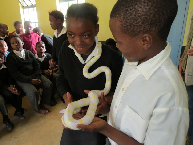 Dargle children get up close to a snake