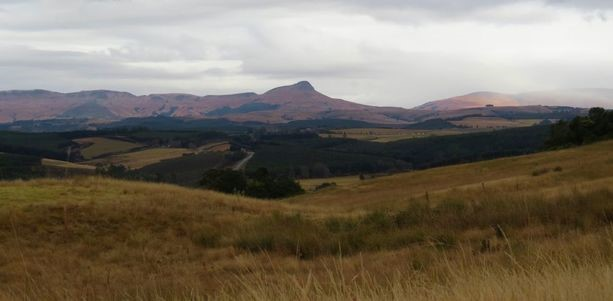darglr valley view
